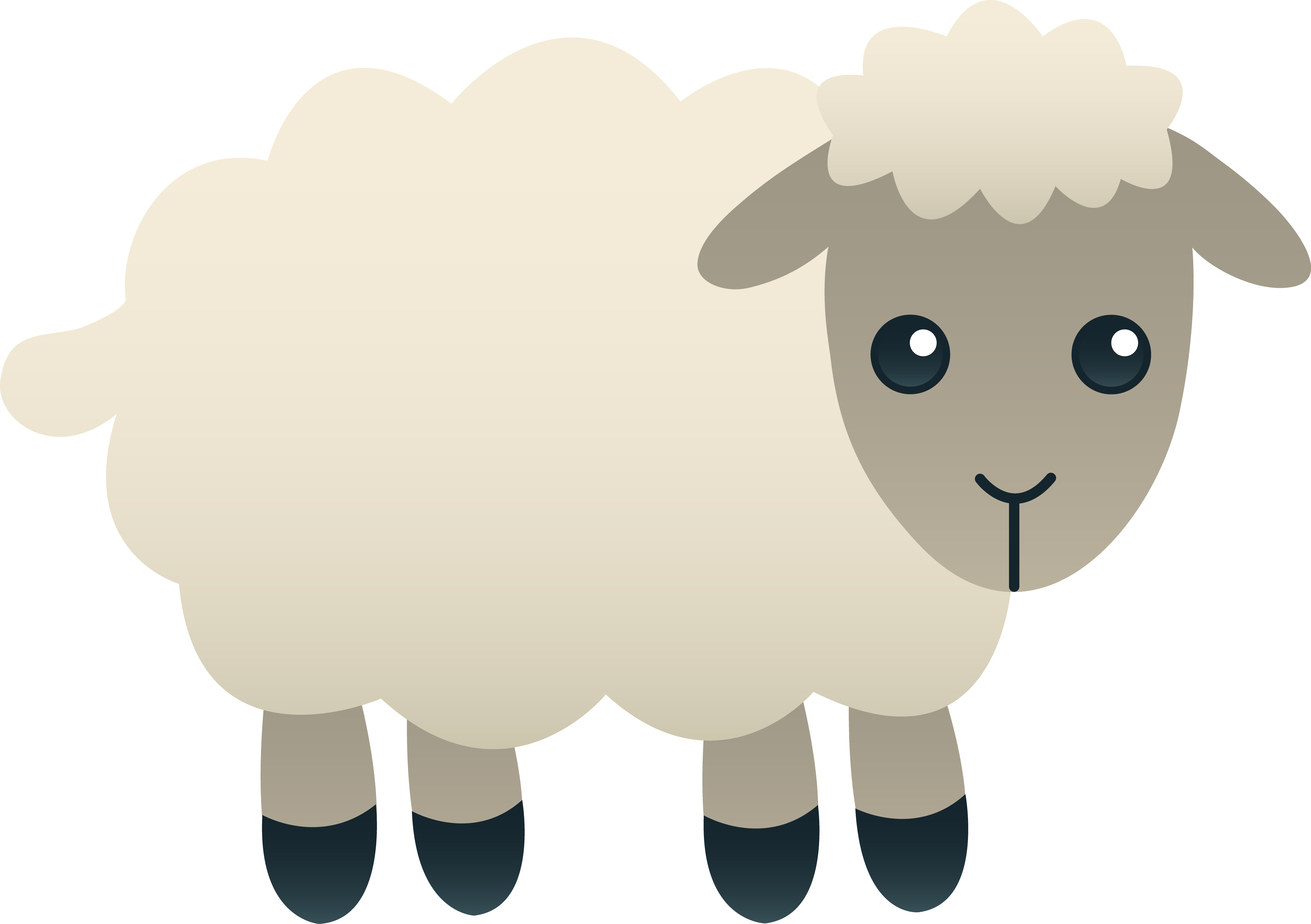 Baby sheep png. Fluffy white aiti as