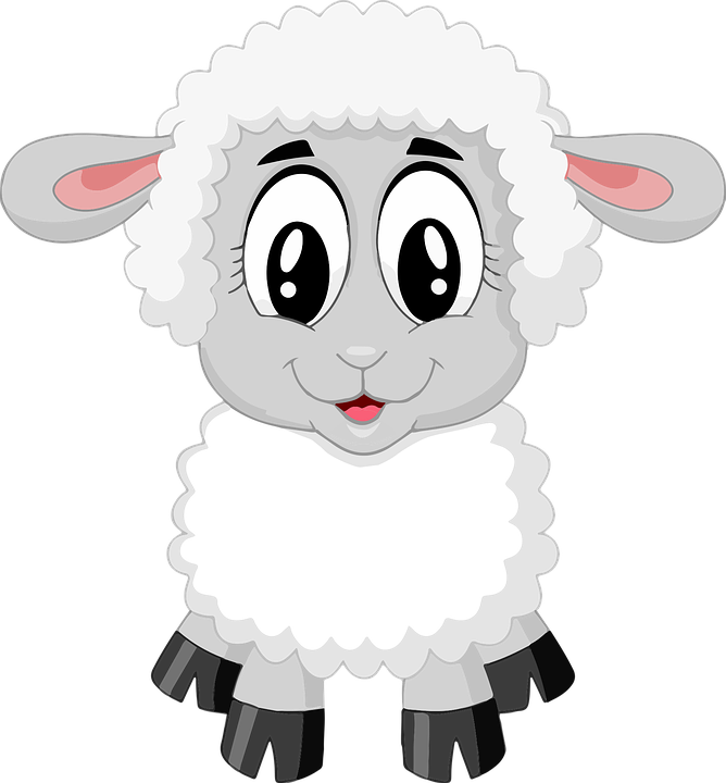 Baby sheep png. Free image on pixabay