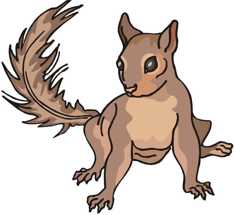 Baby squirrel png. Clipart at getdrawings com