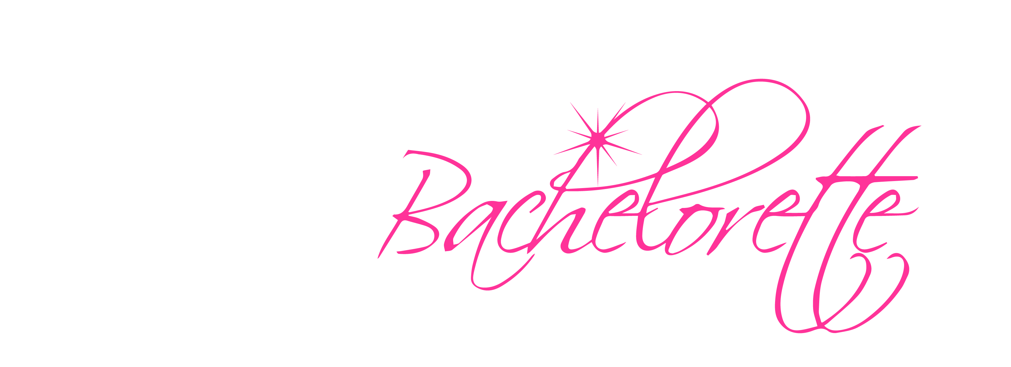 Bachelorette party png. Vip chicago planners