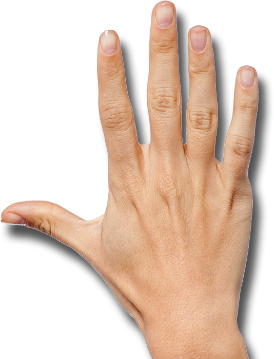 Back of hand png. Picture right desktop backgrounds