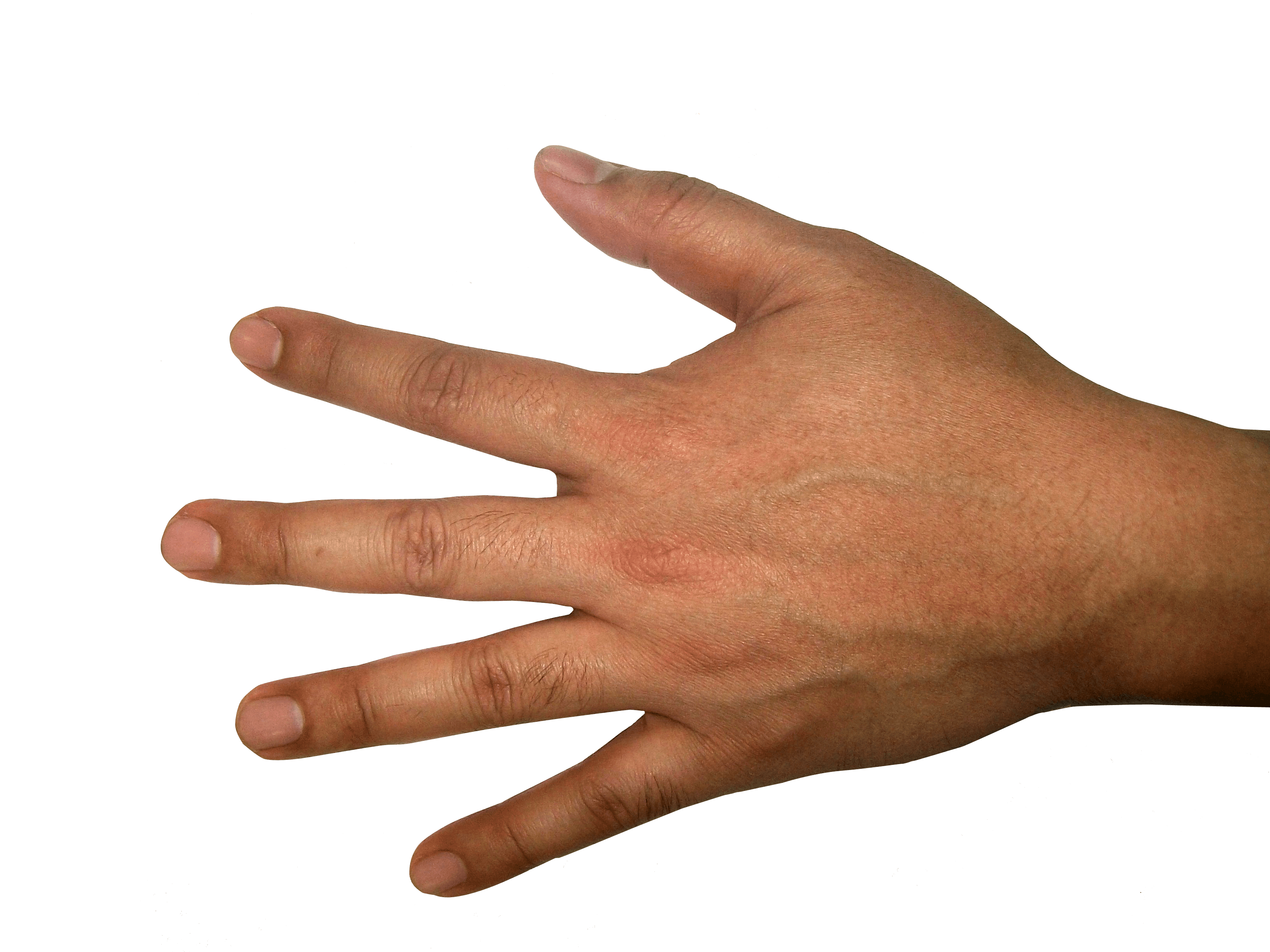 Back of hand png. Icon scalable vector graphics