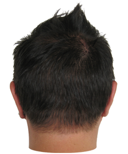 Back of head png. Image