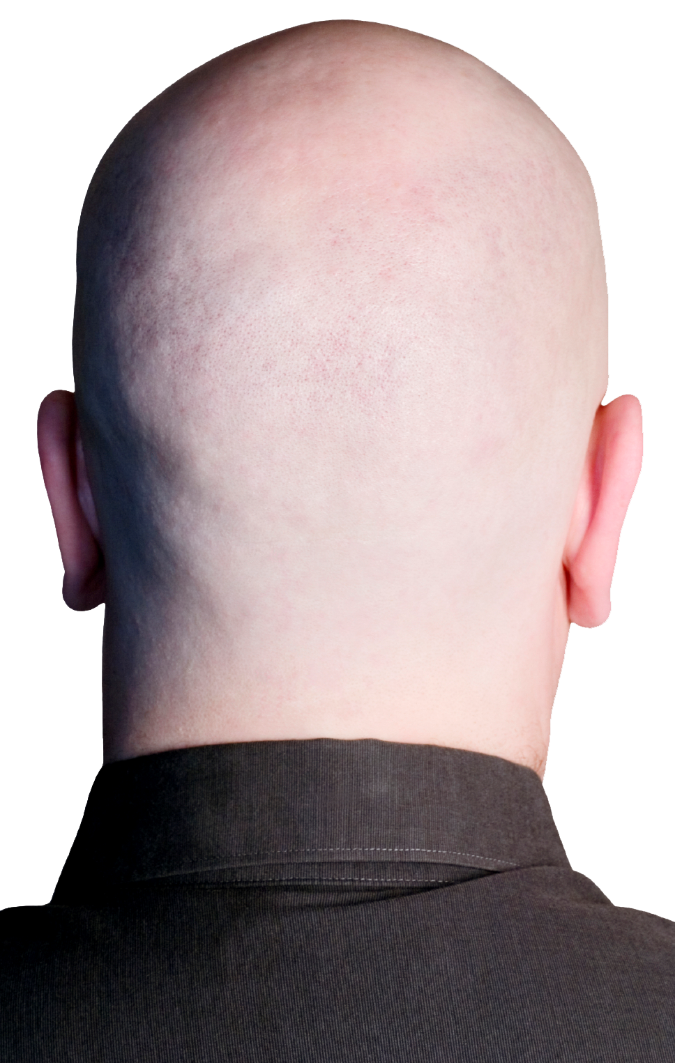 Back of head png. This is your brain