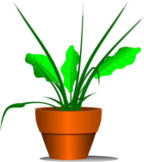 Plant clipart potted plant. Free graphics of plants