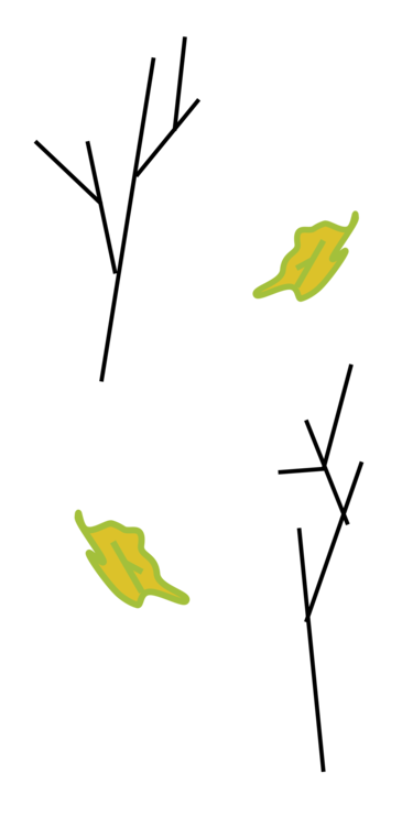 Background clipart plant. Branch leaf computer icons