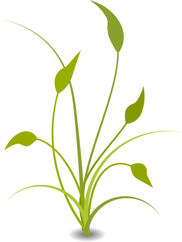 Background clipart plant. Nature free vector for