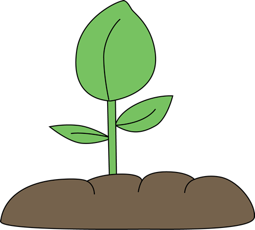 Other clipart seedling. Free plant images gallery