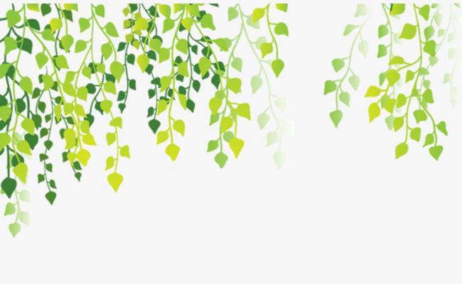 Background clipart plant. Green leaves material branches