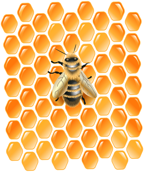 Background honeycomb png. With bee clip art