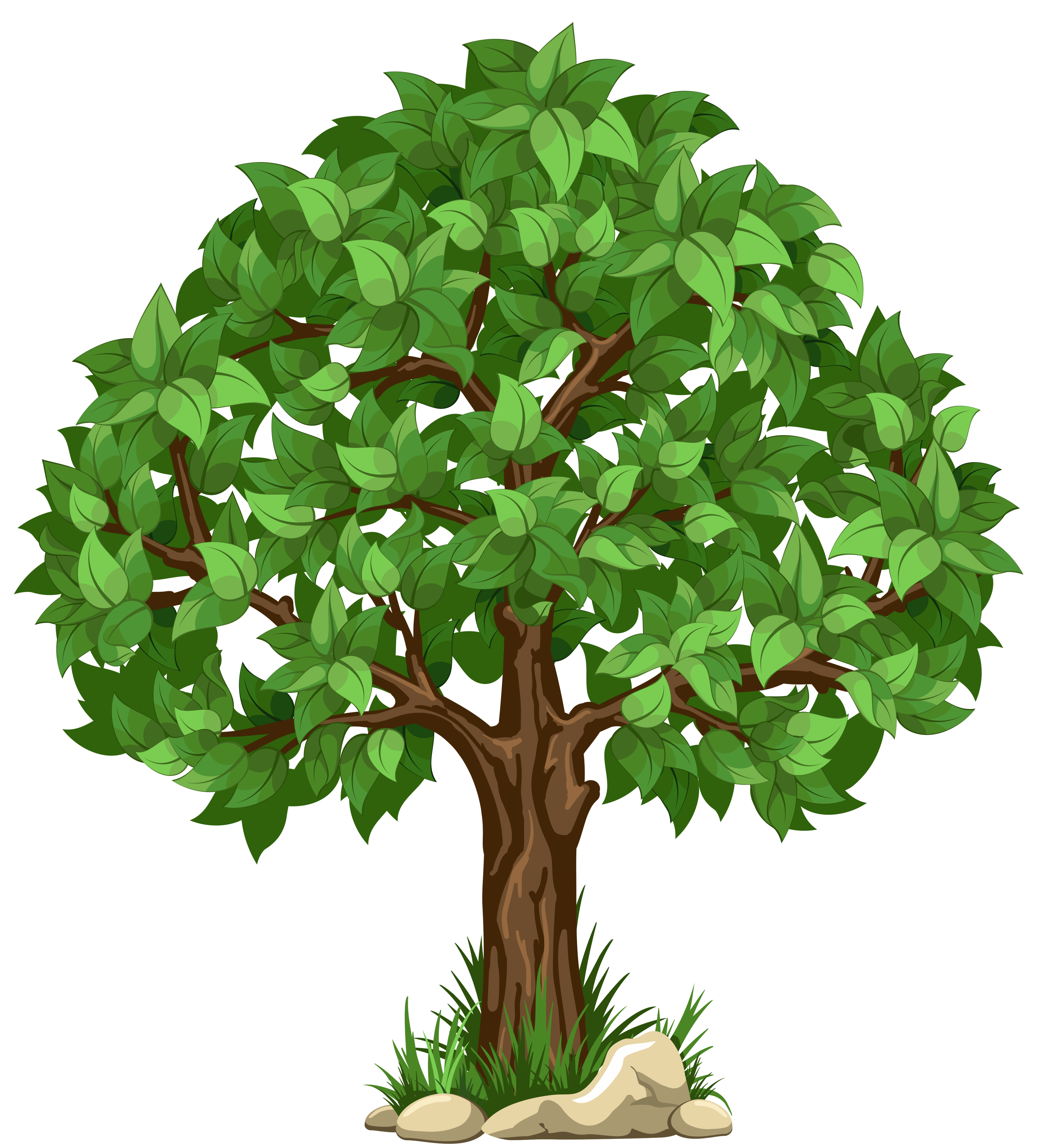 Background trees png. Tree no encode clipart