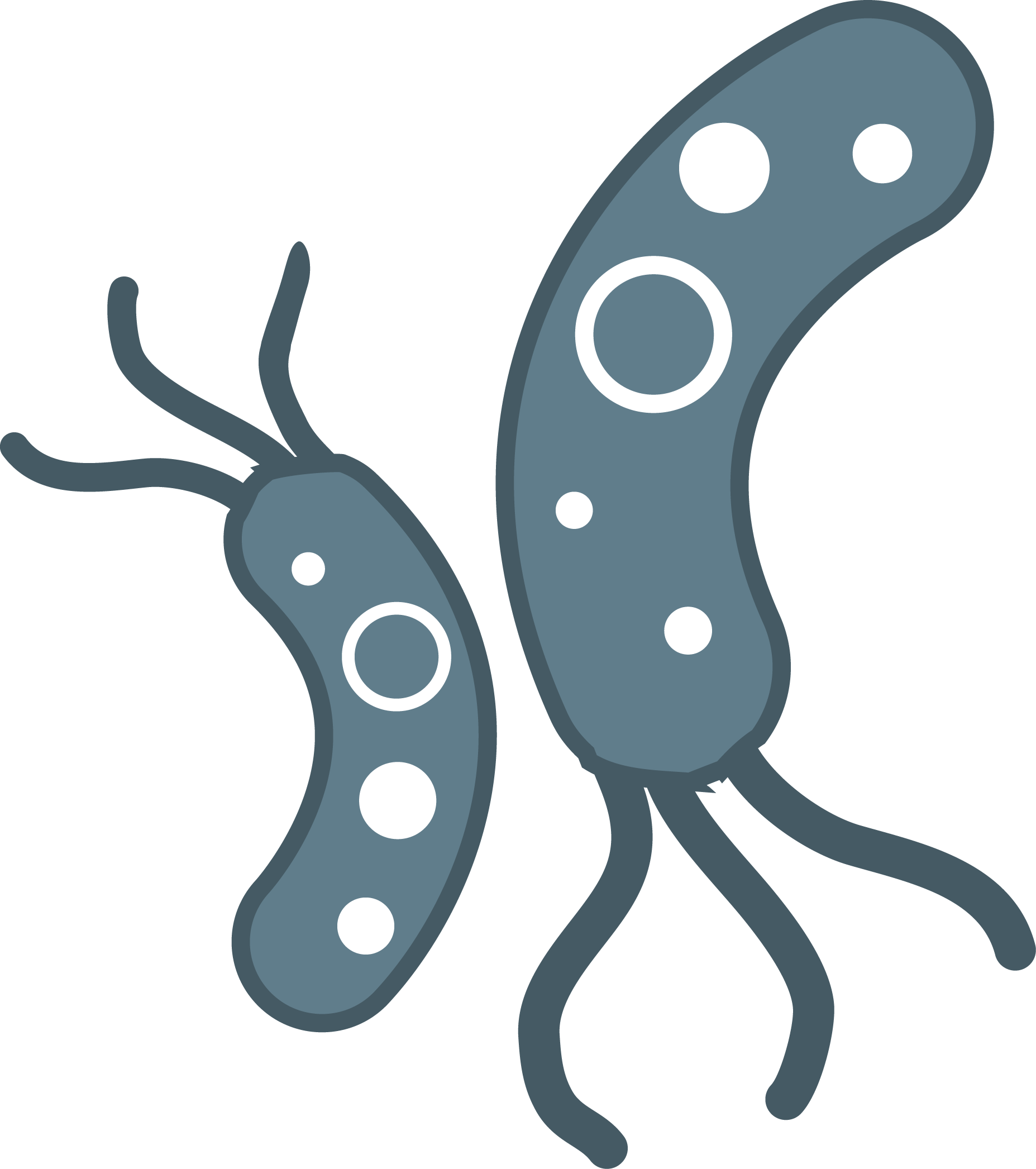 Bacteria png. Transparent images all file