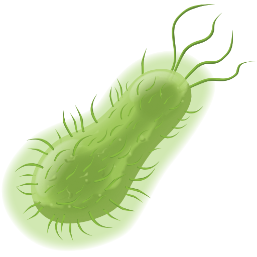 bacteria png clear background