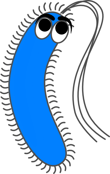 Bacteria png happy. Free cliparts download clip