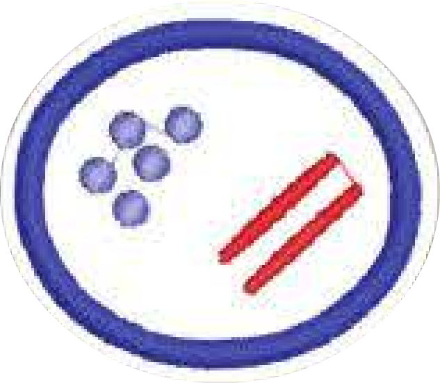 Bacteria png sad. File honor pathfinder wiki