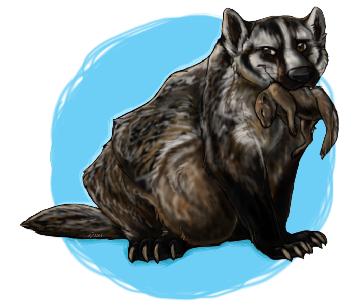 Badger clipart. American free clip