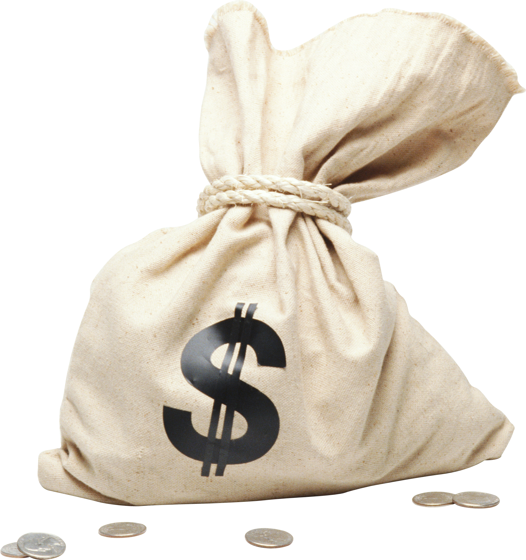 Bag of cash png. Money image free pictures