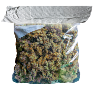 Bag of weed png. Images in collection page