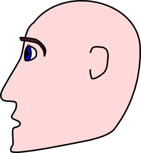 Bald clipart bald girl. Man head side clip