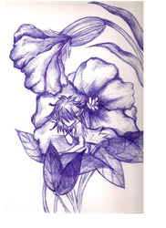 Ballpoint drawing face. Pen doodle faerie by