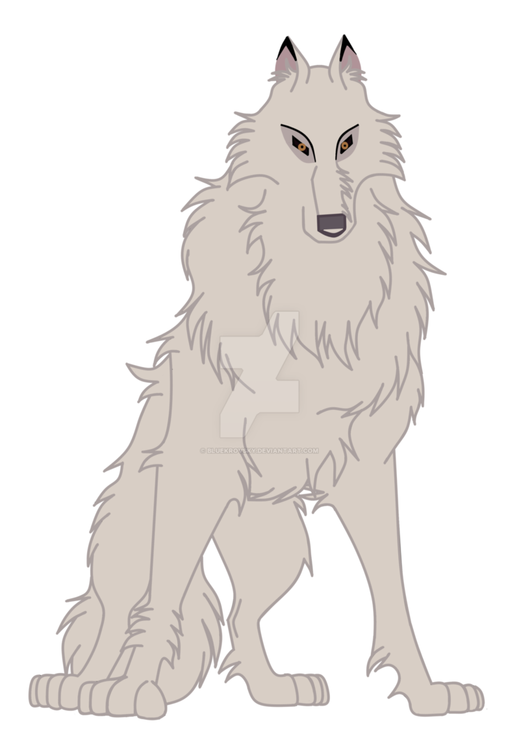 Balto drawing wolf. Aniu the white by