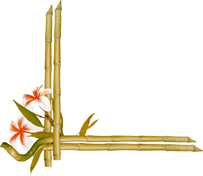 Bamboo border png. Paper bamboe flowers green