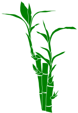 Stem clipart bamboo stick. Free cliparts download clip