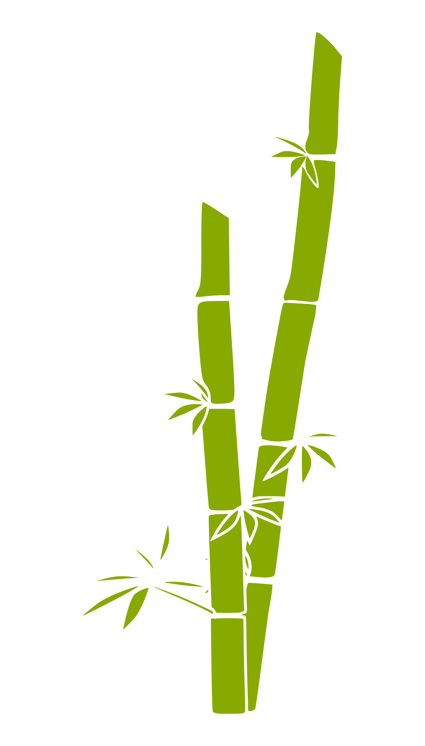 Bamboo silhouette png. Clipart big image