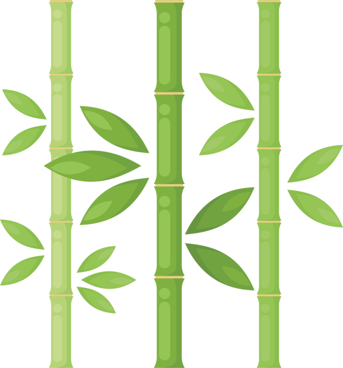 Stem clipart bamboo stick. Plants drawing tree plant