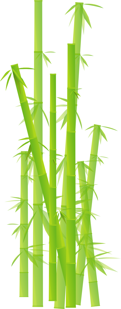 Bamboo clipart clip art. No background library
