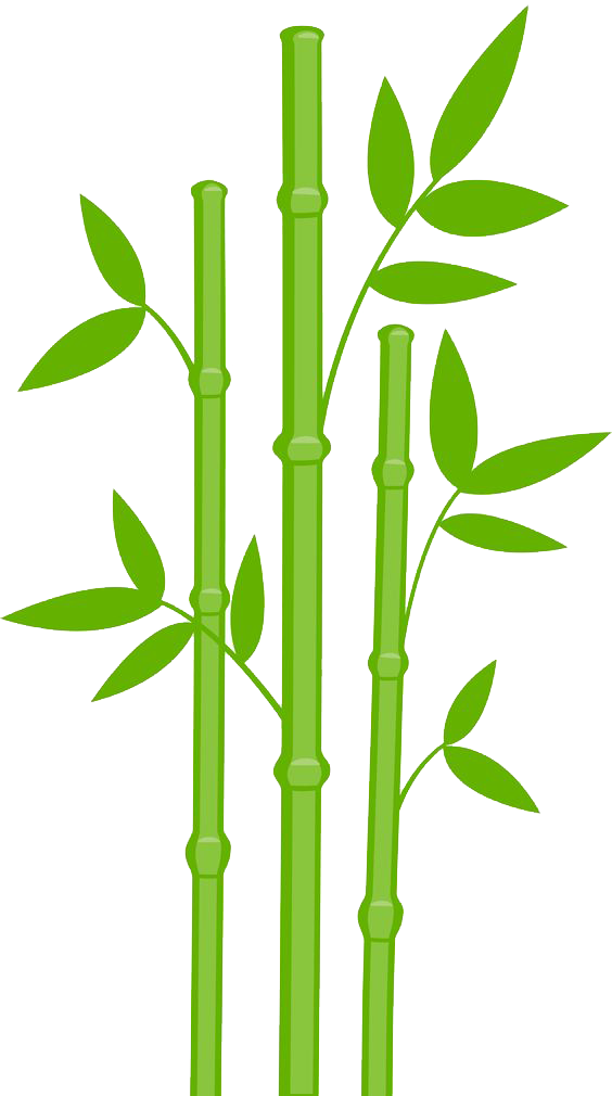 Bamboo clipart bamboo design. Transparent png pictures free