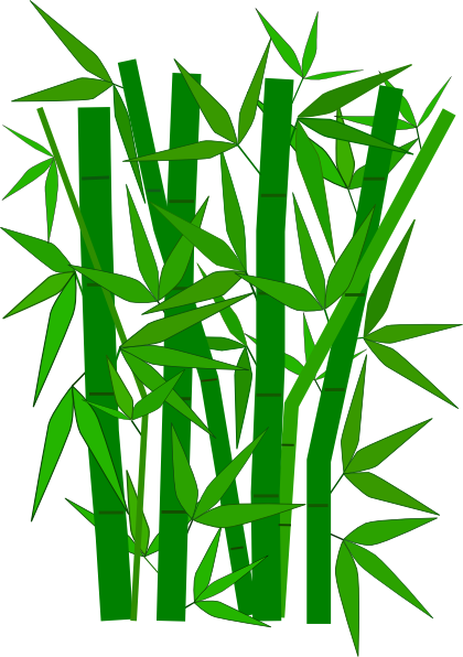 Bamboo clipart bamboo design. Real and vector graphics