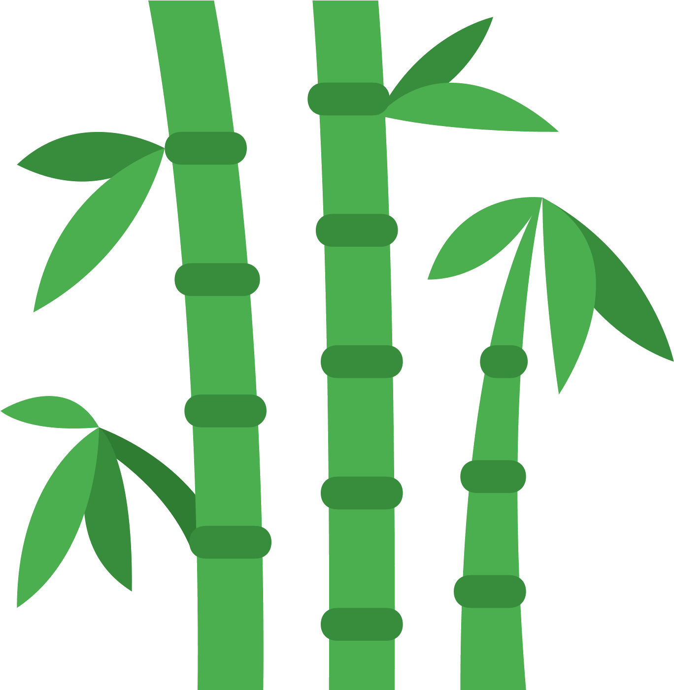 Bamboo leaf png. Download clipart clip art
