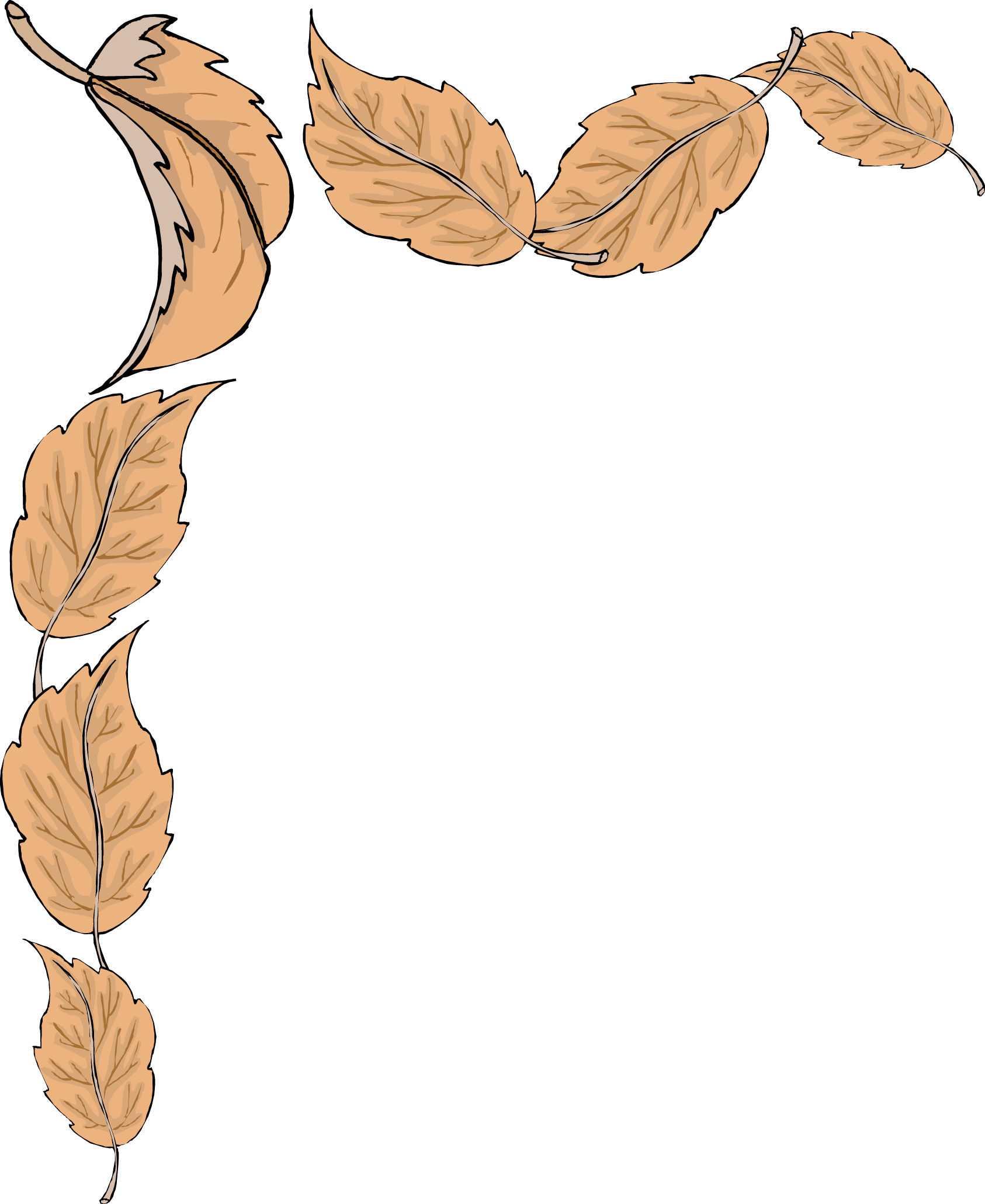 Borders drawing nature. Fall leaves border clipart
