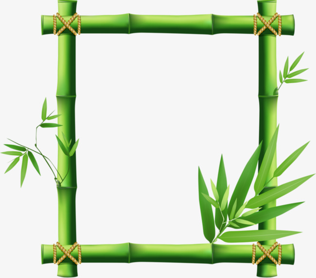 Leaves asparagus png image. Bamboo clipart nature border design banner black and white