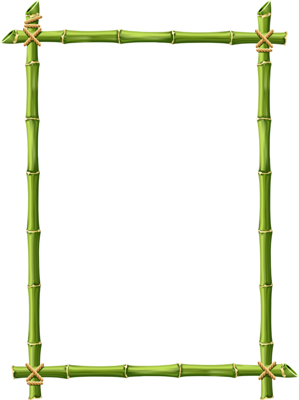 bamboo frame png