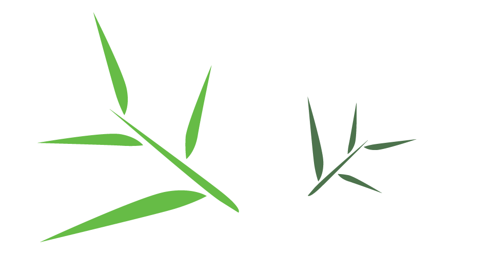 Bamboo Leaf PNG Free Download