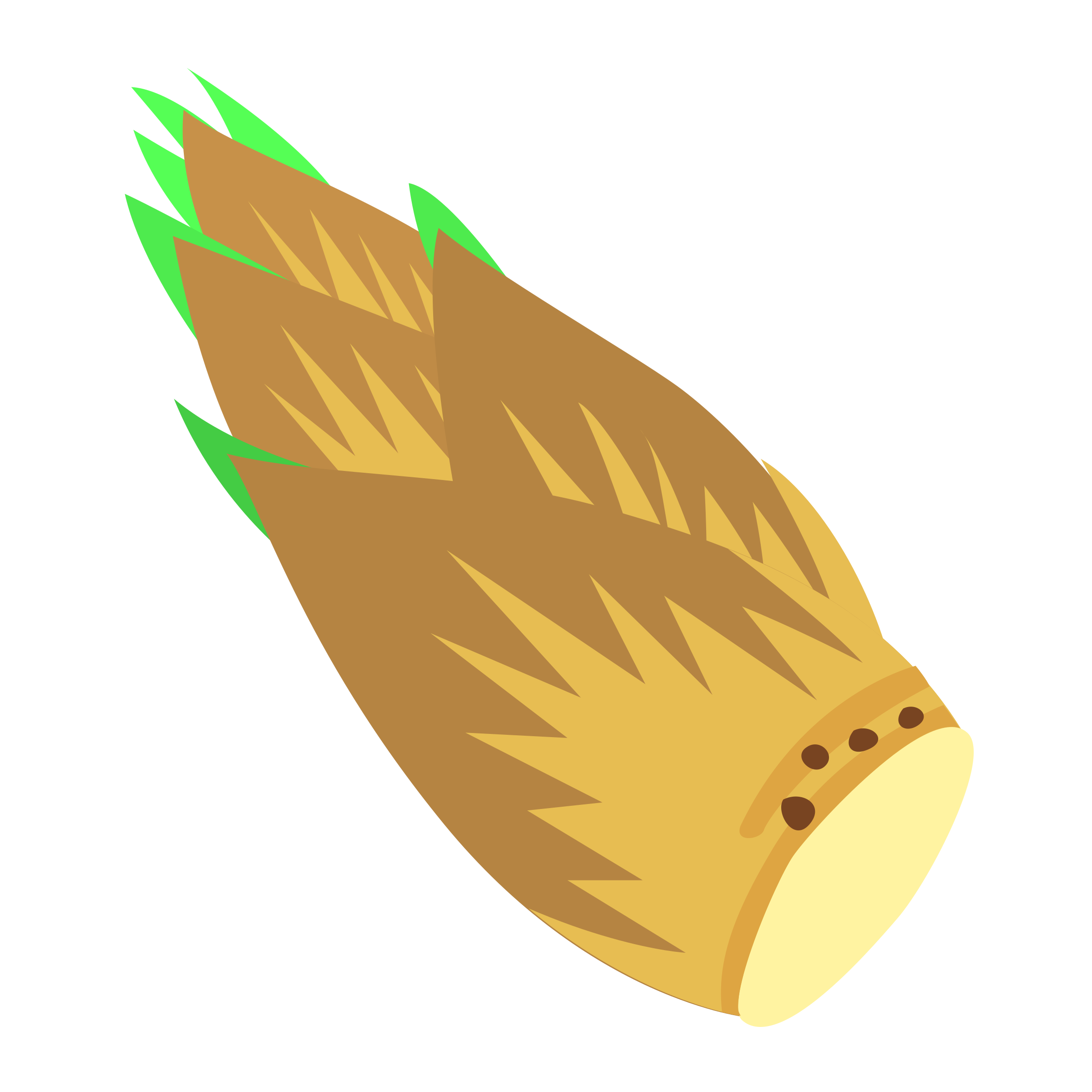 Bamboo shoots png. Shoot icons free and