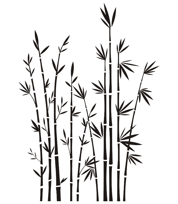 Bamboo silhouette png. Pin by rosa julia