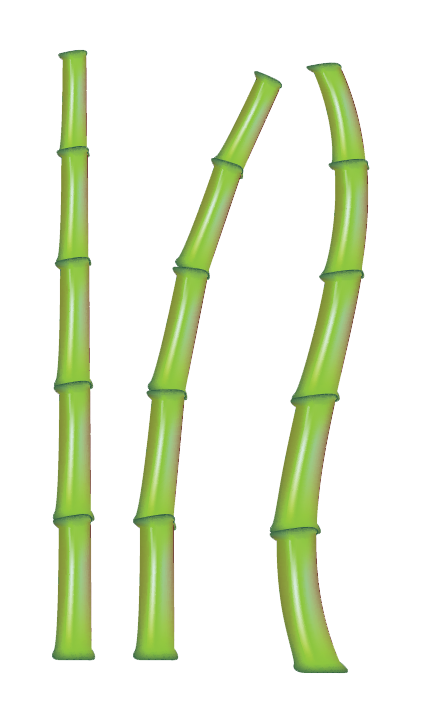 Cane transparent bamboo. Download free png stick