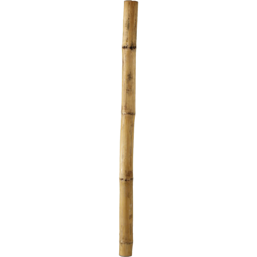 bamboo sticks png