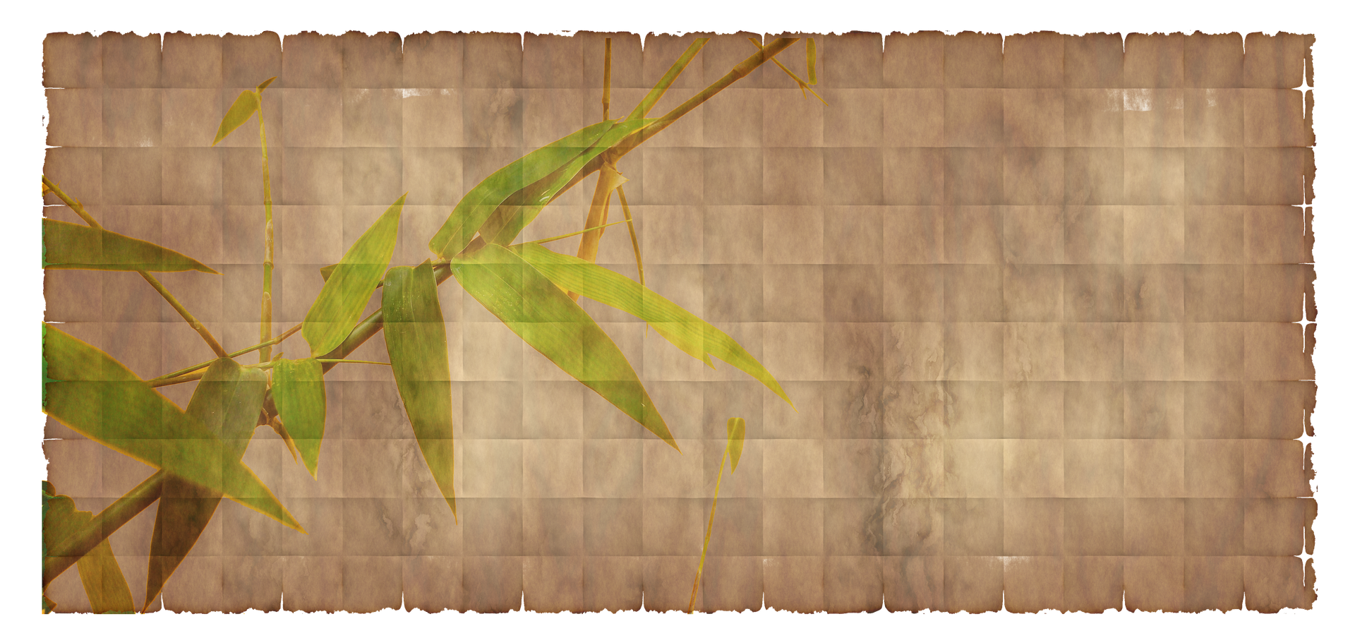 Bamboo texture png. The superiority of fibre