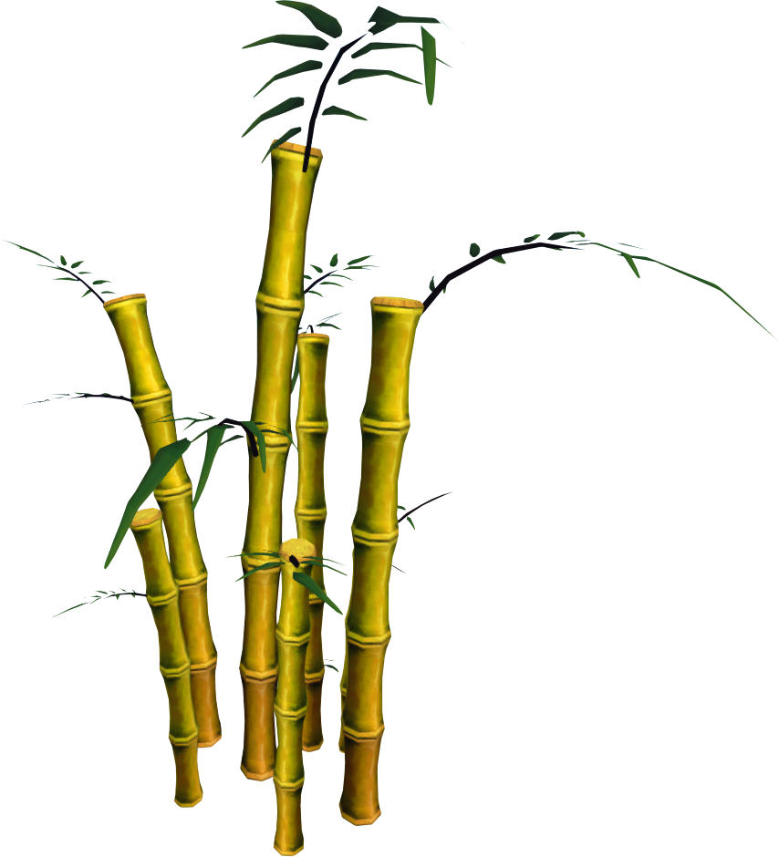 Bamboo tree png. Image golden runescape wiki