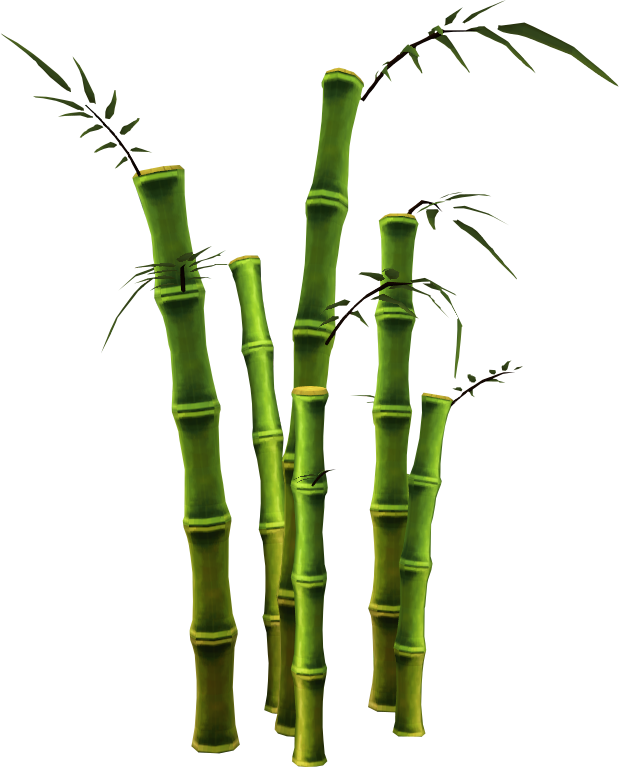 Bamboo trees png. Image tree runescape wiki