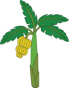 Banana clipart banana drawing. How to draw a