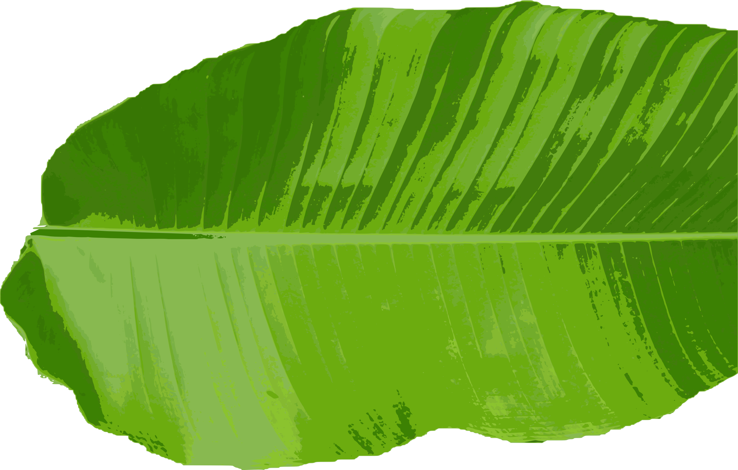 Banana leaves png. Leaf thai cuisine clip