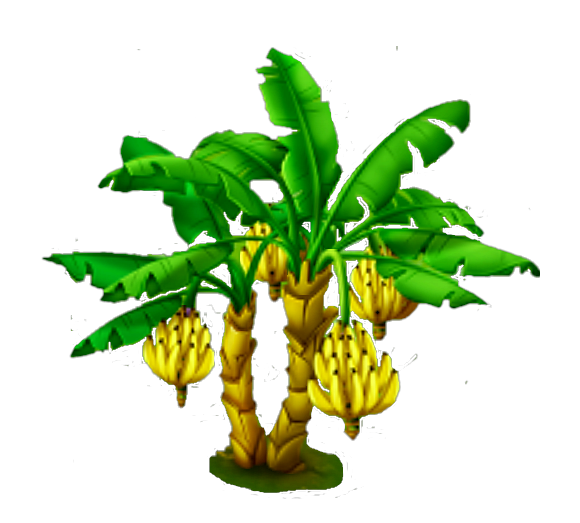 Banana tree png. Image hay day wiki
