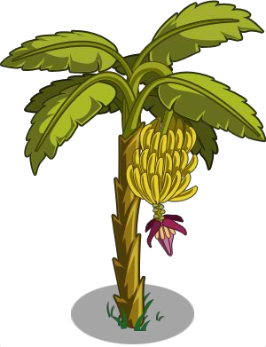 Banana tree png. Image icon farmville wiki