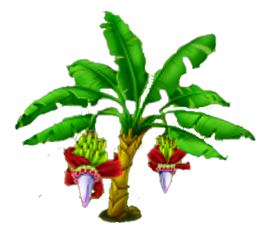 Banana tree png. Image stage hay day