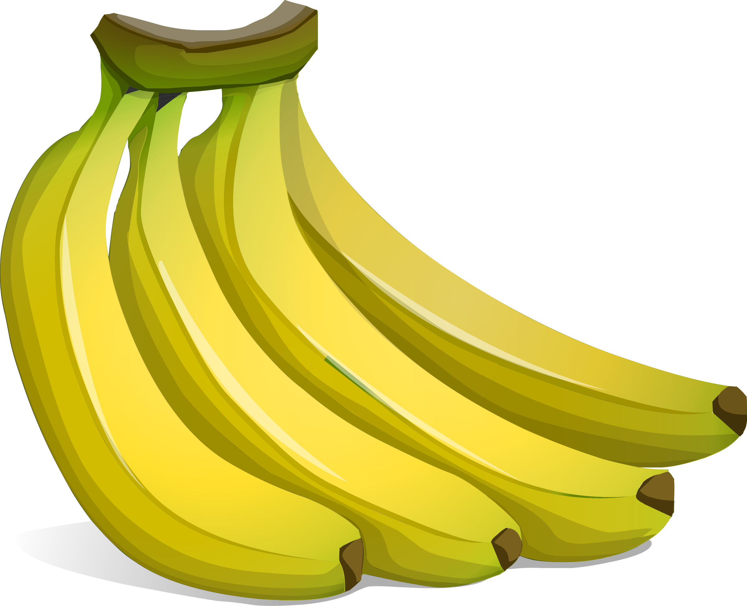 Bananas clipart. A bunch of big